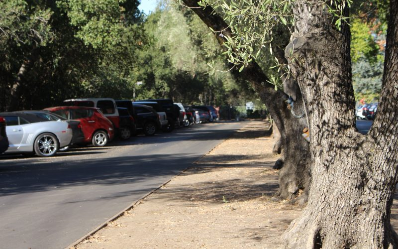 SHP Parking: Anti-American?