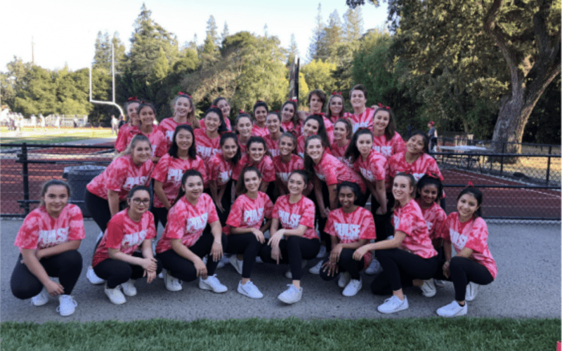 Pulse: More Than Just a Team