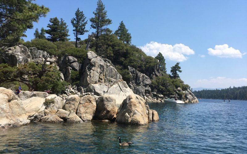 Quad Drop #3: A Visit to Tahoe
