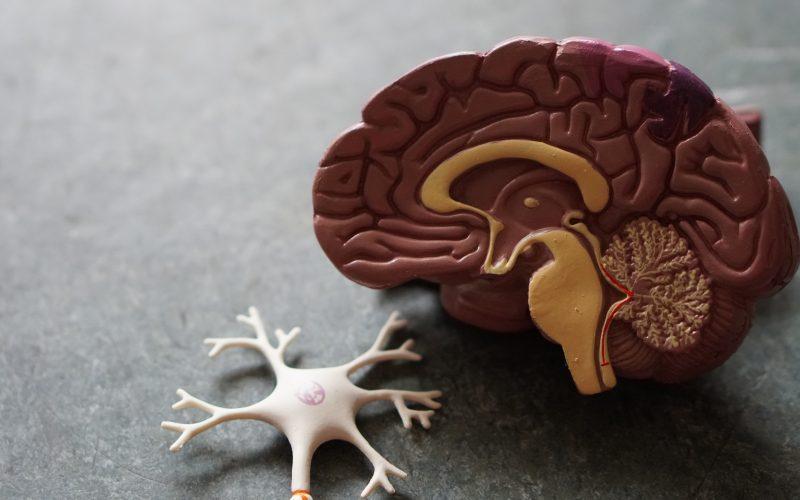 Using AI To Predict Mental Illness
