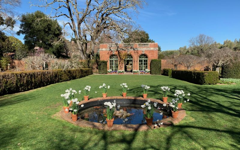 Filoli Photos – Winter Break