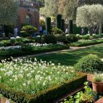 Opening With Filoli!